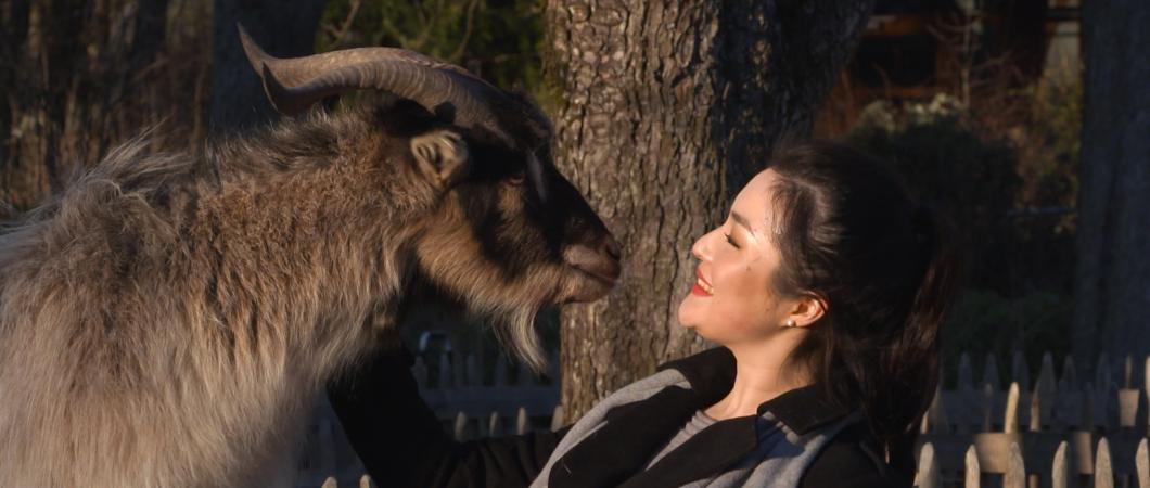 Opernsängerin mit Ziege im Tierpark